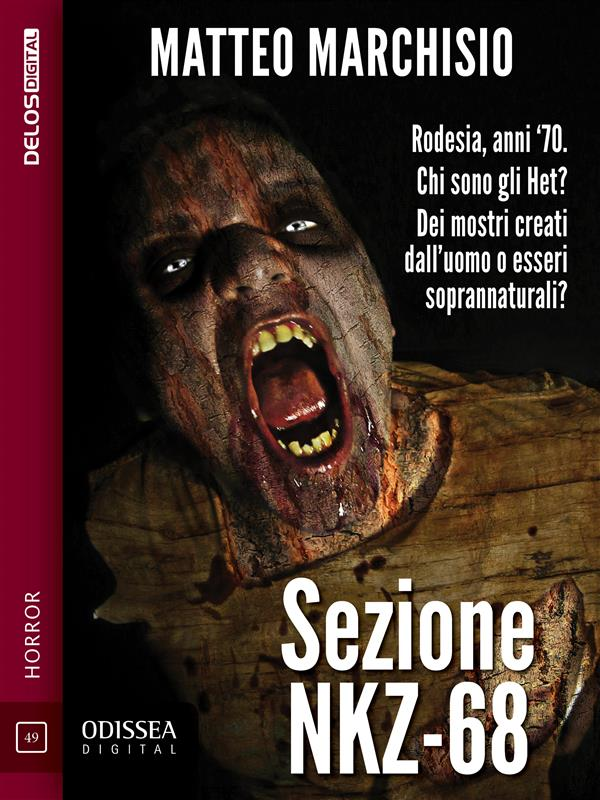 Sezione NKZ-68 (ebook)